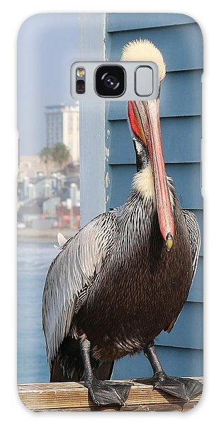 Pelican - 4 Galaxy Case