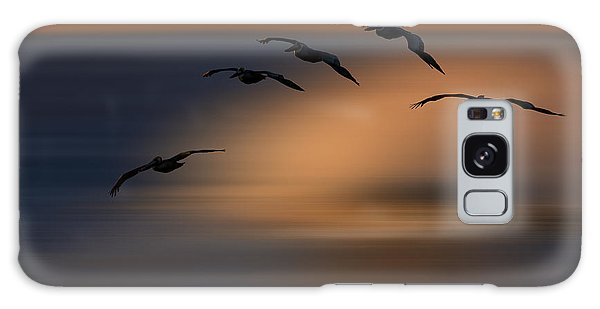 Pelican Blur  73a2324 Galaxy Case by David Orias