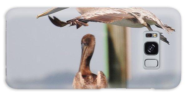 Pelican Flyover Galaxy Case