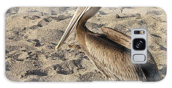 Pelican On Beach Galaxy Case by DejaVu Designs