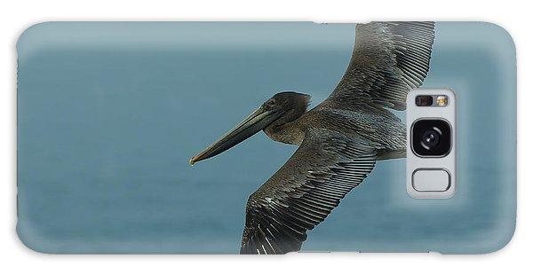 Pelican Galaxy Case