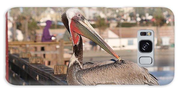 Pelican Sitting On Pier  Galaxy Case