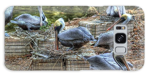 Pelicans By The Dock Galaxy Case