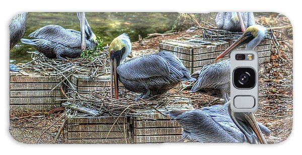 Pelicans By The Dock Galaxy Case by Donald Williams