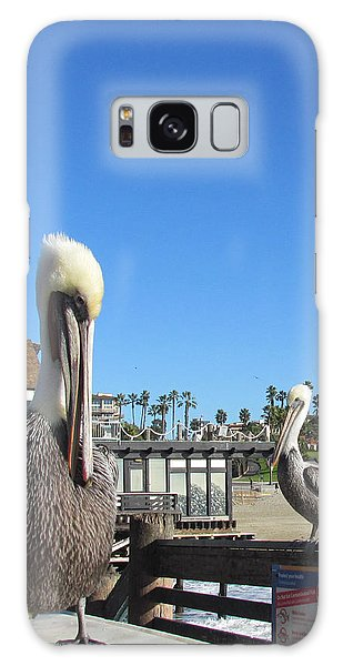 Pelicans On Pier Galaxy Case