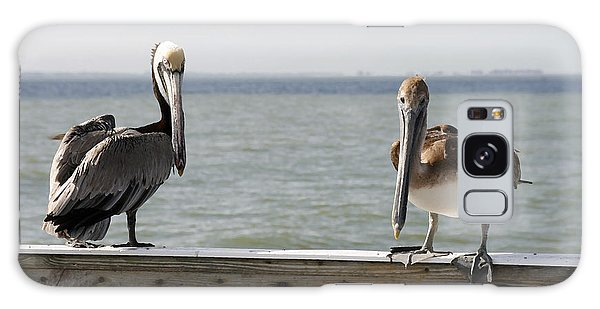 Pelicans On The Pier At Fort Myers Beach In Florida Galaxy Case