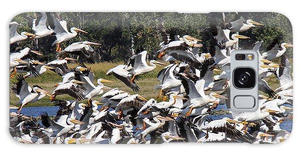 Pelicans Take Flight Galaxy Case