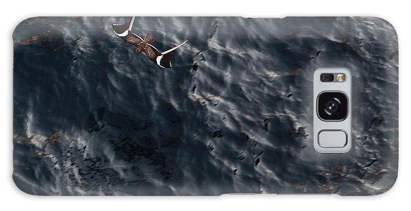 Penant Winged Nightjar 3 Galaxy Case by Gregory Daley  PPSA