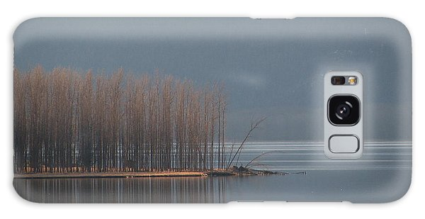 Peninsula Of Trees Galaxy Case by Leone Lund
