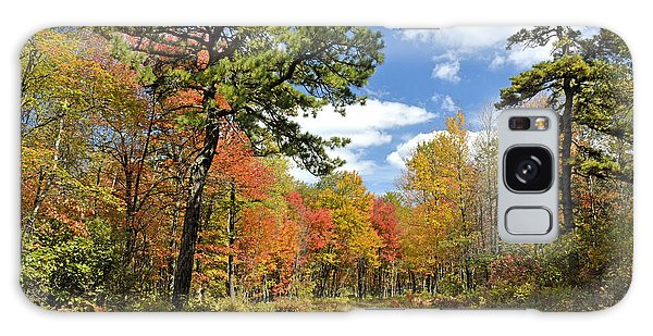 Pennsylvania Forest In Autumn Pocono Mountains Galaxy Case by A Gurmankin