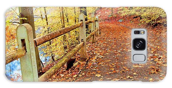 Pennypack Trail Philadelphia Fall Galaxy Case