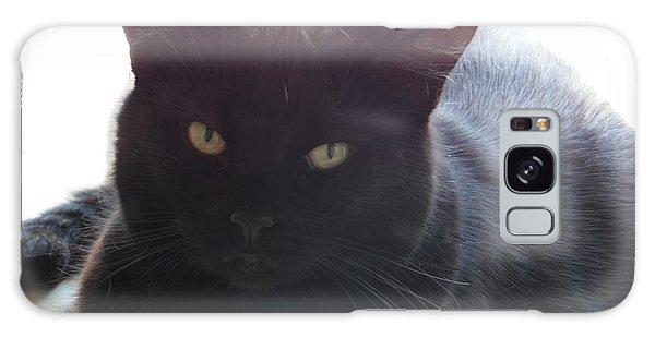Pepsi The Lucky Black Cat Galaxy Case