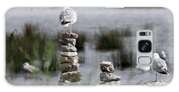 Perched On A Rock Cairn Galaxy Case