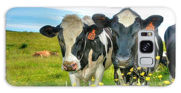 Percy's Holsteins Galaxy Case