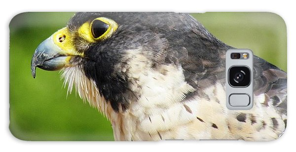 Peregrine Falcon Galaxy Case by Cynthia Guinn