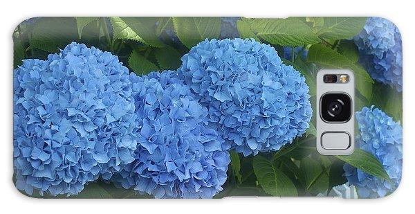 Perfect Blue Hydrangeas  Galaxy Case