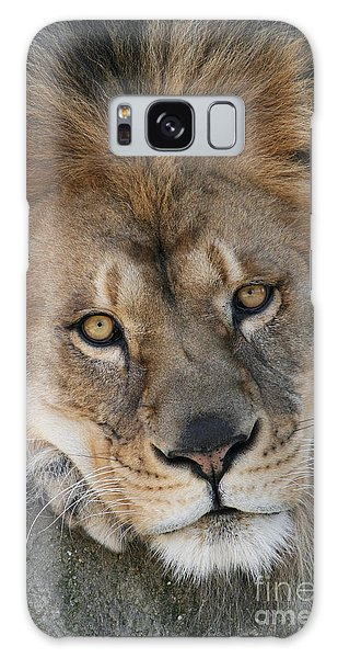 Pet Me Galaxy Case by Judy Whitton