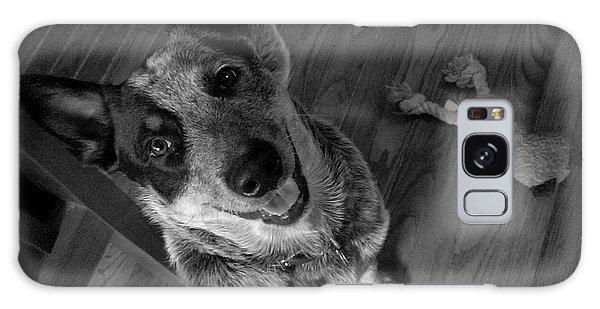 Pet Portrait - Forrest Galaxy Case