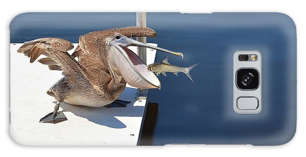 Pete The Pelican And The Doomed Fish Galaxy Case by Pamela Blizzard