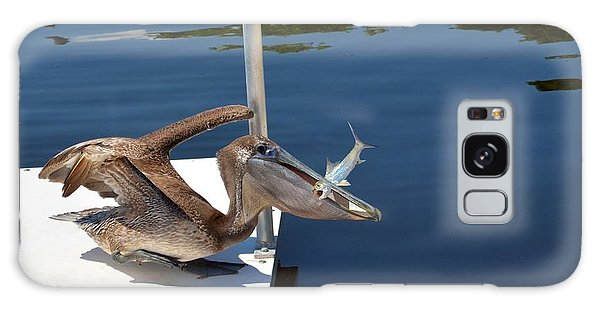 Pete The Pelican And The Poor Fish Galaxy Case by Pamela Blizzard