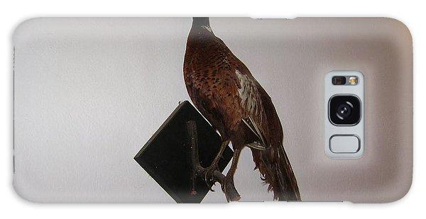 Pheasant Galaxy Case