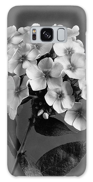 Phlox Blossoms Galaxy Case