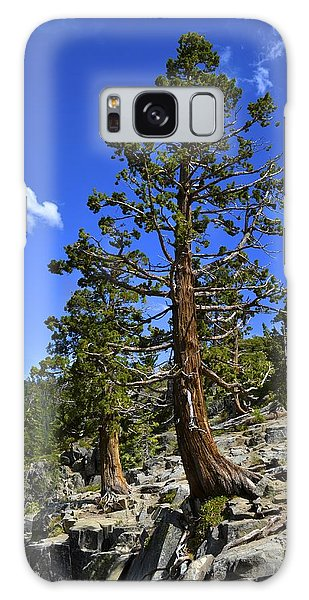 Trees Near Emerald Bay Lake Tahoe Galaxy Case by Alex King