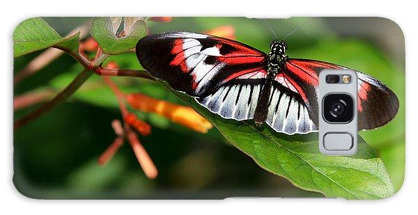 Piano Key Butterfly On Fire Bush Galaxy Case