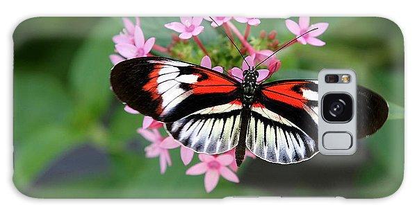 Piano Key Butterfly On Pink Penta Galaxy Case