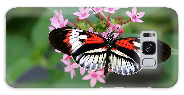 Piano Key Butterfly On Pink Penta Galaxy Case