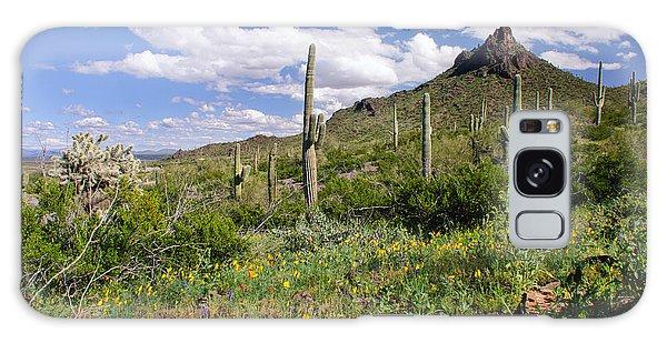 Picacho Peak State Park Galaxy Case