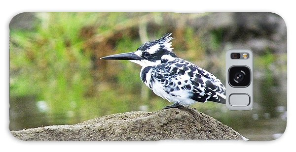 Pied Kingfisher Galaxy Case by Tony Murtagh