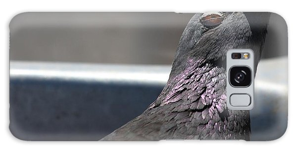 Pigeon In Ecstasy  Galaxy Case