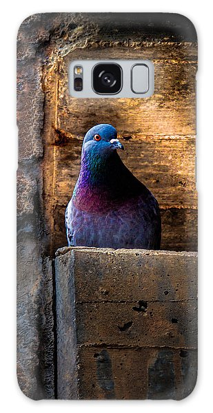 Pigeon Of The City Galaxy Case