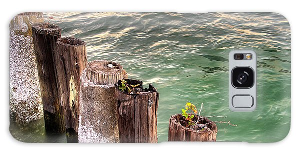 Pilings In Commencement Bay Tacoma Wa Galaxy Case by Rob Green