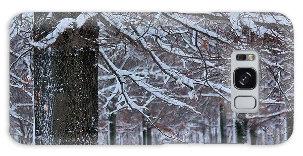 Galaxy Case featuring the photograph Pin Oak Snow by Ann Murphy