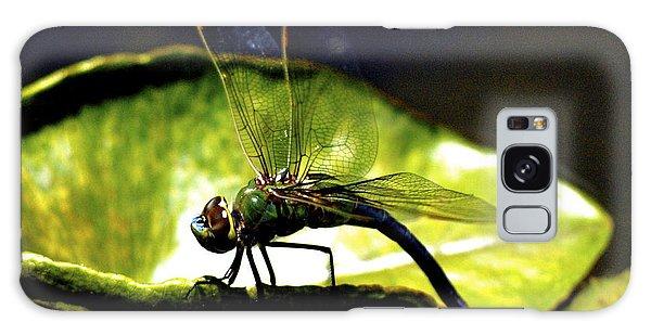 Pinao The Hawaiian Dragonfly Galaxy Case by Lehua Pekelo-Stearns