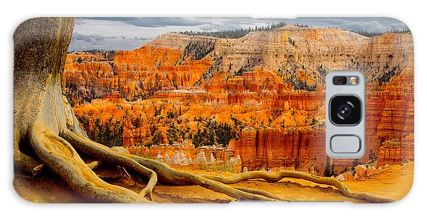 Pine At Bryce Galaxy Case