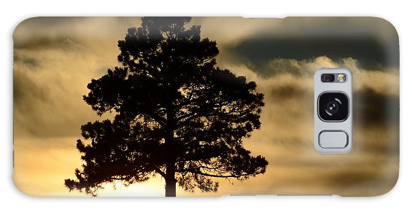 Pine At Sundown Galaxy Case