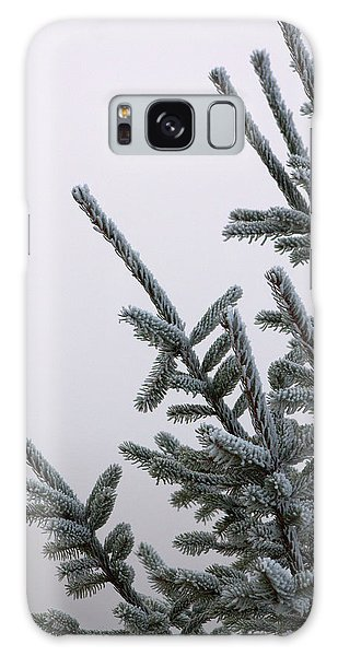 Pine Branches Galaxy Case