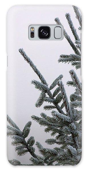 Pine Branches Galaxy Case