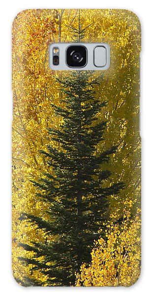 Pine In Aspens Galaxy Case