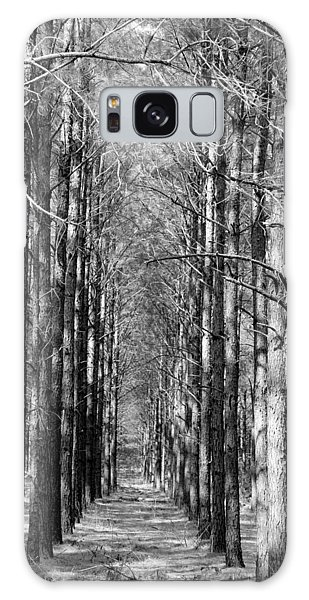 Pine Plantation Galaxy Case