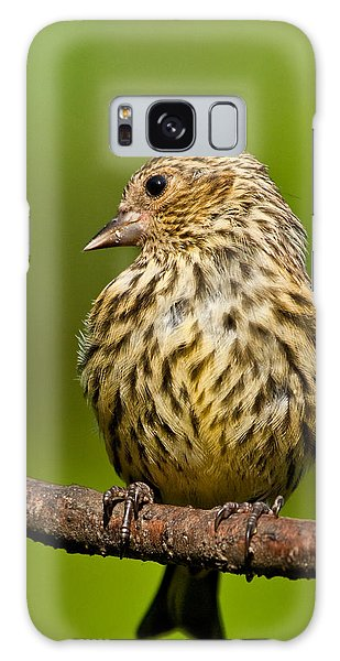 Pine Siskin With Yellow Coloration Galaxy Case