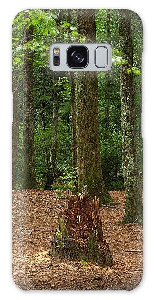 Pine Stump Galaxy Case
