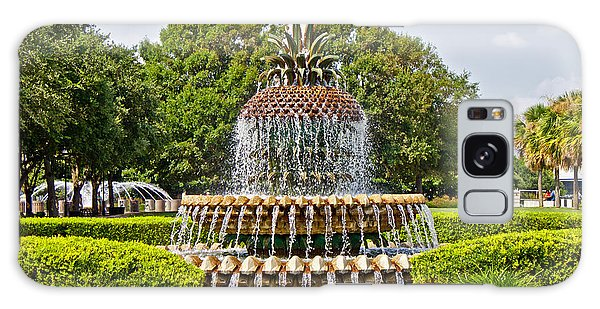 Pineapple Fountain In Waterfront Park Galaxy Case