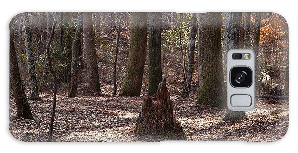 Pinetrees 1 Galaxy Case