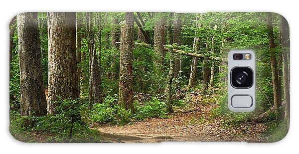 Pinewood Path Galaxy Case