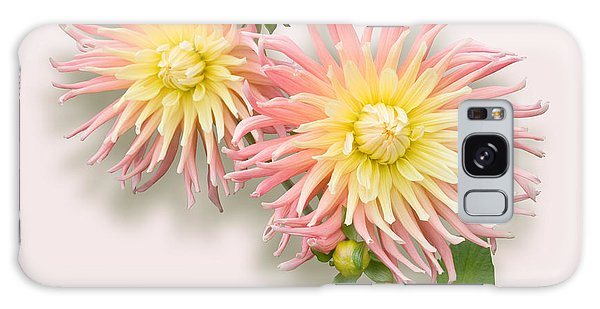 Pink And Cream Cactus Dahlia Galaxy Case by Jane McIlroy