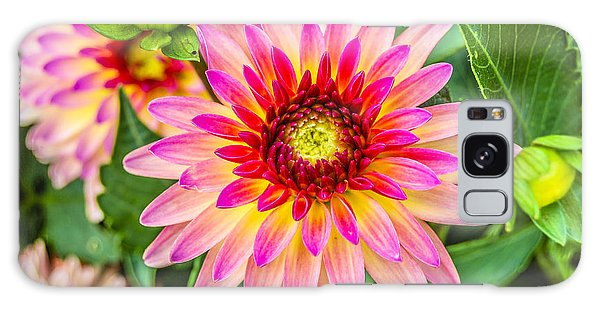 Pink And Purple Blooms Galaxy Case by Alan Marlowe
